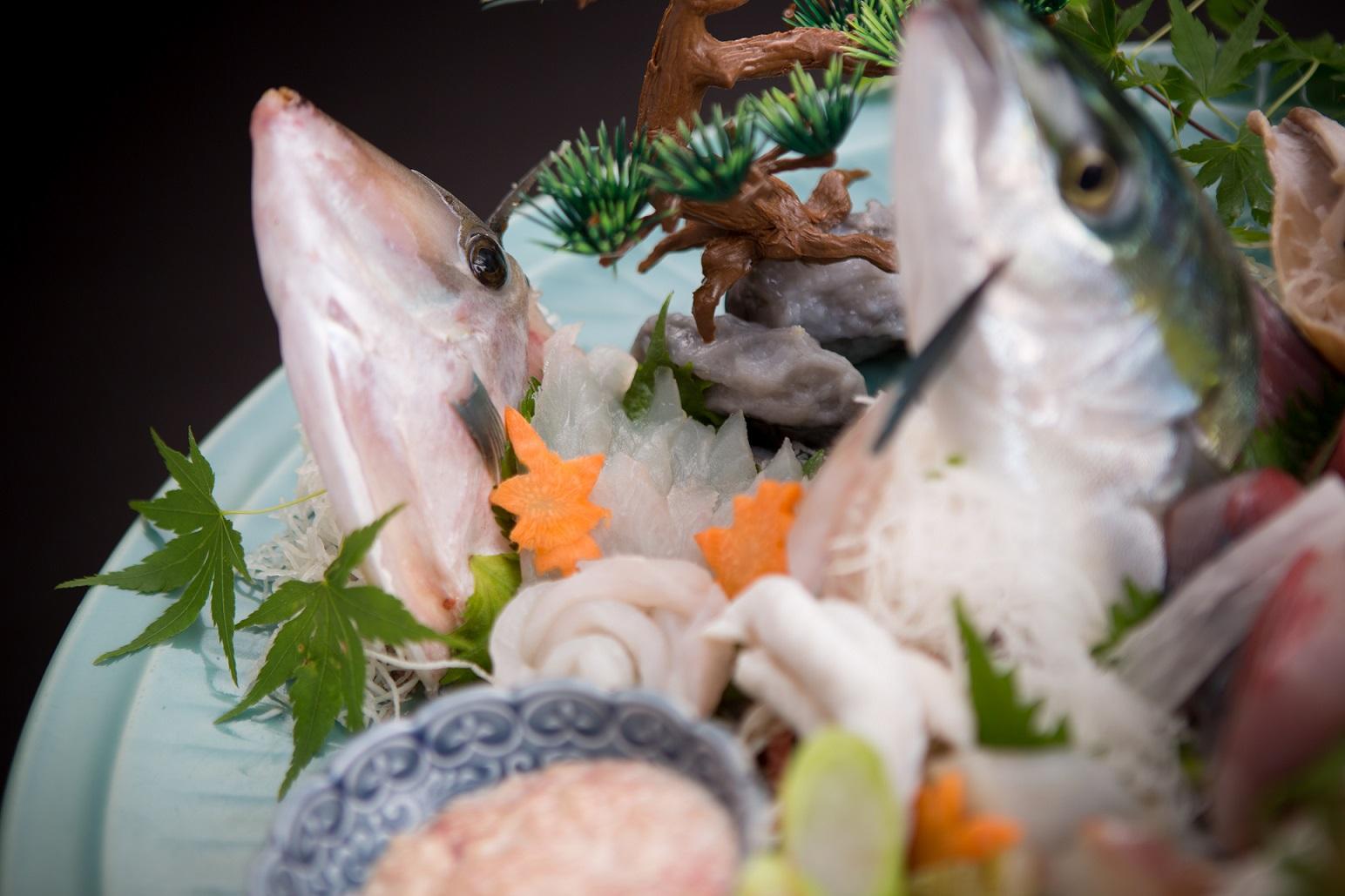 姿盛り地魚