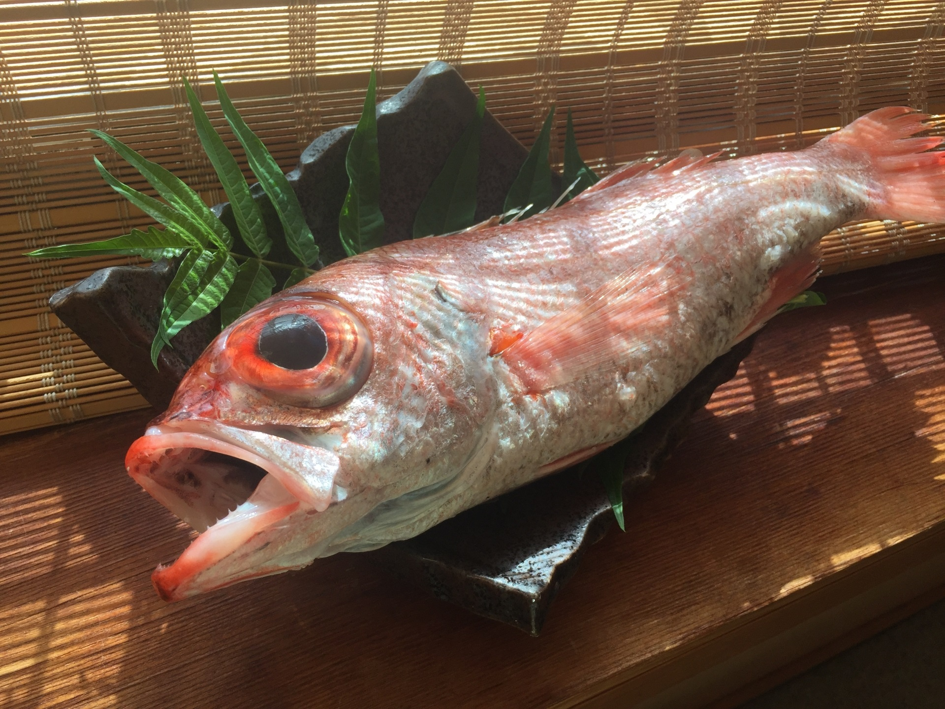 高級魚のど黒・旬の芳醇な脂と香りを愉しむ秋の極み会席