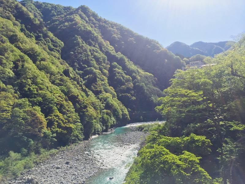 今朝の想面橋からの黒部川(2020.5.8)