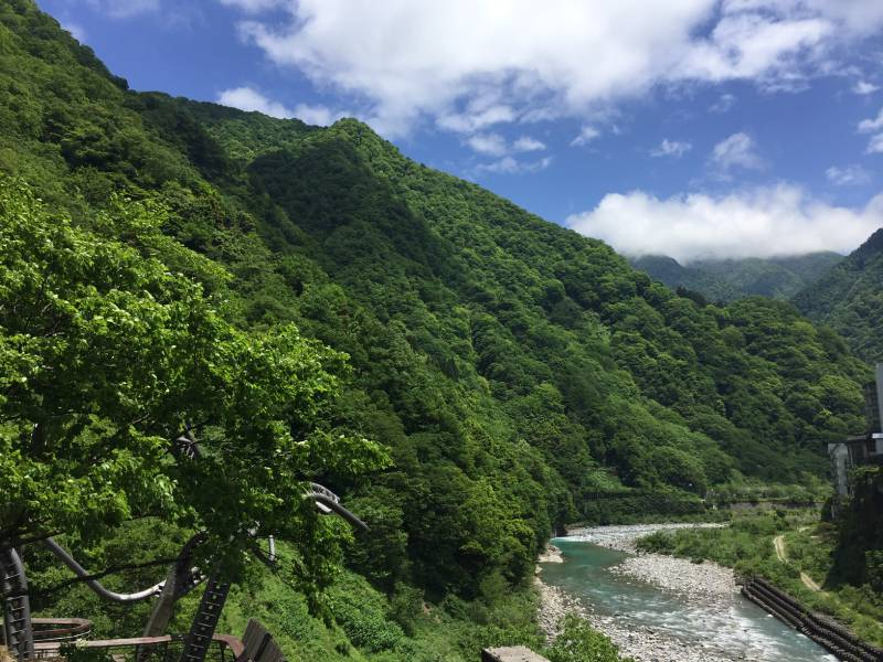 面影橋からの風景